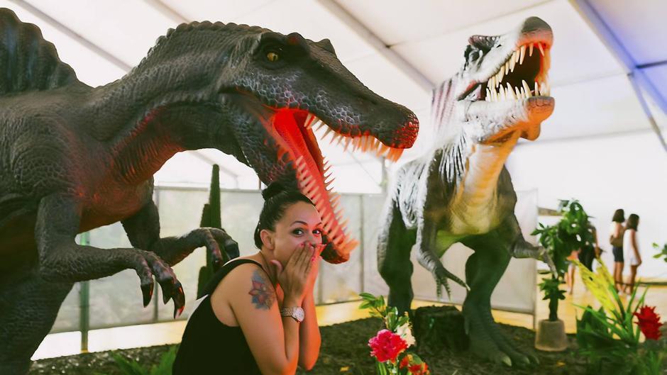 Actividades Dinosaurs Tour