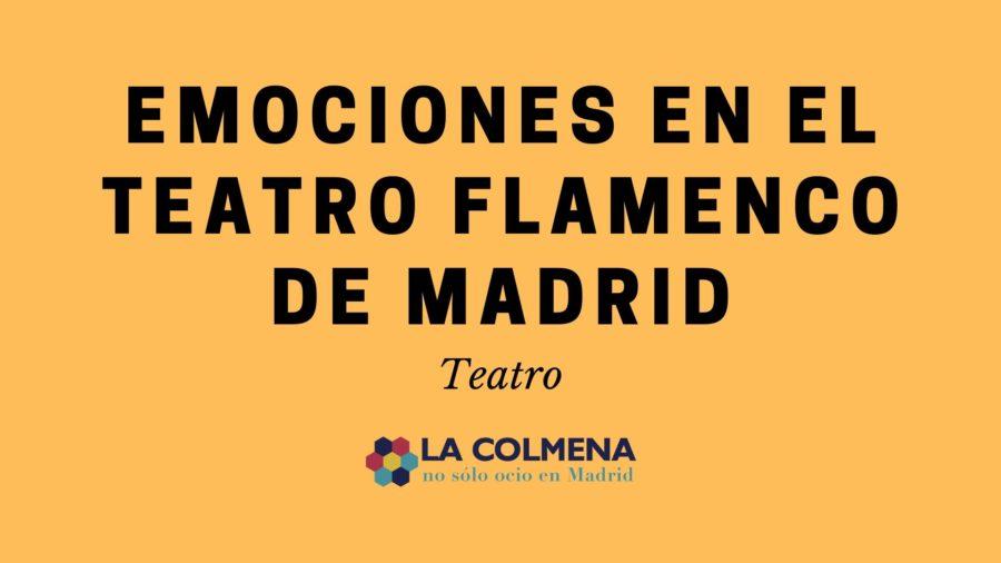 emociones, espectáculo flamenco