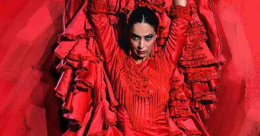 espectáculo flamenco emociones