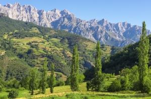 Escapada Picos de Europa: 1 ó 2 noches para 2