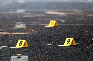 Máster Online Criminología y Criminalística