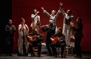 Entradas Flamenco Las Minas Puerto Flamenco